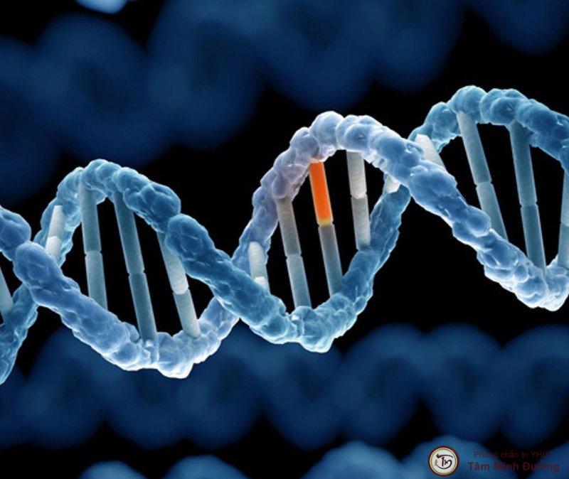 Thoát vị đĩa đệm có di truyền không?
