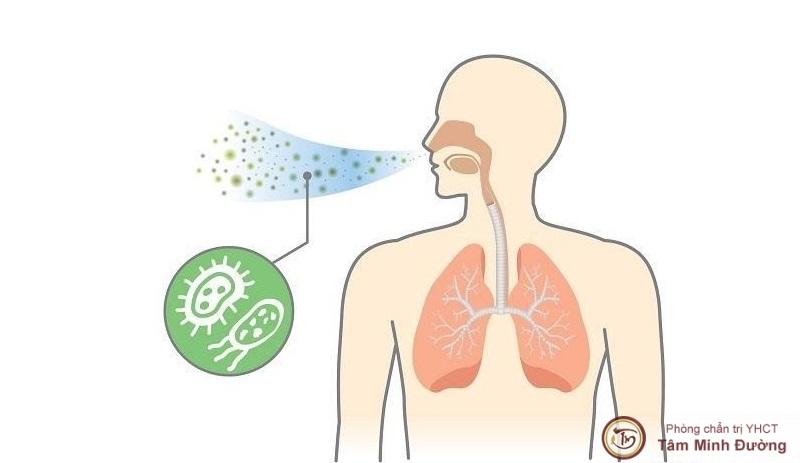 Viêm phổi có lây không